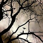 Crows Over a Tree by Debbie Pinard
