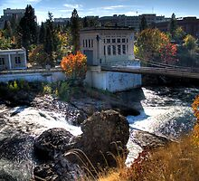 Washington Water Behind the Falls by Arelle Hall