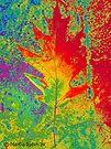 Artsy Autumn Leaf by Marcia Rubin