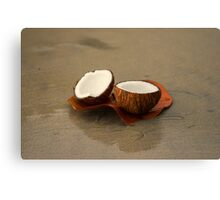 Coconut Canvas Print