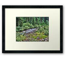 Canyon Creek 2 Framed Print