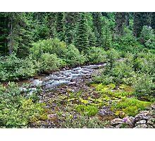 Canyon Creek 2 Photographic Print