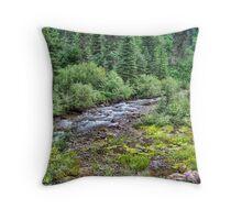 Canyon Creek 2 Throw Pillow
