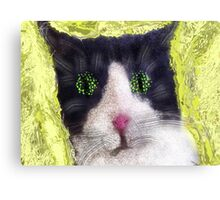 Sillycat Canvas Print