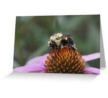 Pretty in Pollen Greeting Card