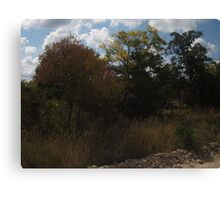 fall countryside Canvas Print