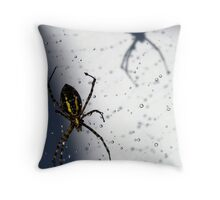 Spider With Water Droplets II Throw Pillow