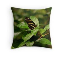 Zebra Longwing  Butterfly Throw Pillow
