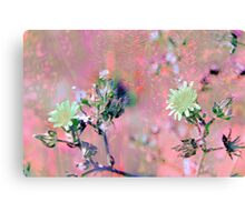 Botanical Abstract in Pastel VIII Canvas Print