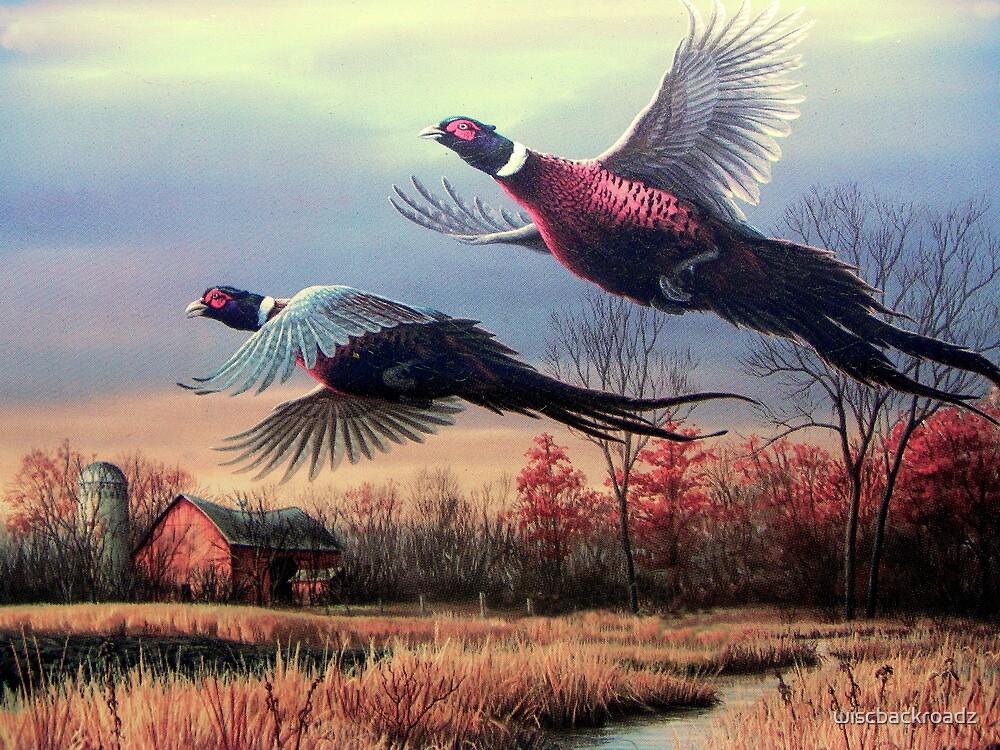 Taking Flight by wiscbackroadz