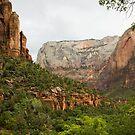 Zion scenery by jeffrae
