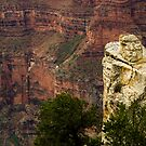 View from North Rim by jeffrae