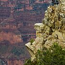 Looking over the North Rim by jeffrae