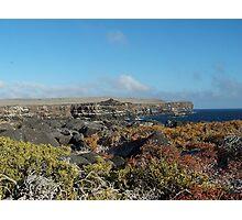 Galapagos Cliffs Photographic Print