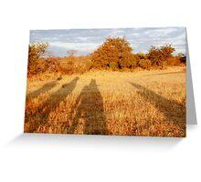 Elephant Shadows - Okavango Delta, Botswana Greeting Card