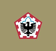 555th Engineer Brigade (United States) by wordwidesymbols