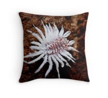 When I grow up I'll be a lacewing Throw Pillow