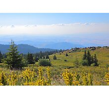 Summer In The Mountain Photographic Print