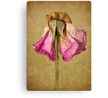 Vintage Petal Petticoat Canvas Print