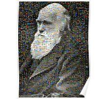 Darwin Mosaic Poster