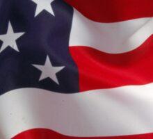 American Phone Sticker