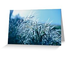 Blue Grass Afternoon Greeting Card