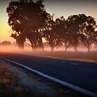 golden mile, murray valley hwy, rutherglen, vic by Georgina James