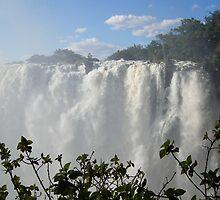 Victoria Falls, Zambia, Africa by Adrian Paul