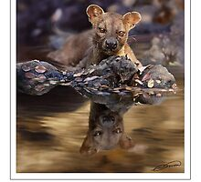 FOSSA Cryptoprocta ferox (NOT A PHOTOGRAPH OR PHOTOMANIPULATION) by DilettantO