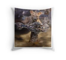 FOSSA Cryptoprocta ferox (NOT A PHOTOGRAPH OR PHOTOMANIPULATION) Throw Pillow