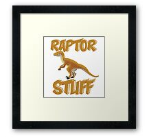 Raptor Stuff Framed Print