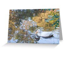 Beautiful Reflections: White Duck on Canal Greeting Card