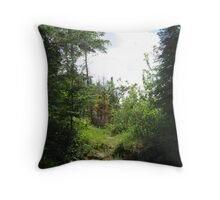 Steps, to solace and peace. Throw Pillow