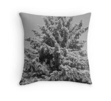 Withered and drooping Throw Pillow