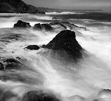 Fury at the Waterline - Flinders by Jim Worrall