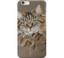 Jasmine, Beautiful long coated tabby cat iPhone Case/Skin