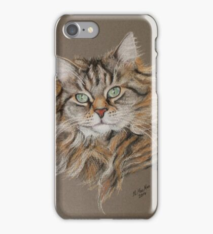 Jasmine, Beautiful long coated tabby cat iPhone Case/Skin