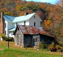 House in the Country by Jane Best