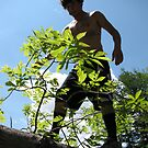 big tree bigger man by koolkillers24