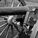 Civil War Cannon 2 by Edward Myers