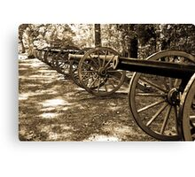 Shiloh Civil War Battlefield 2 Canvas Print