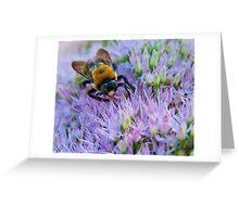 BUMBLEBEE ON SEDUM Greeting Card