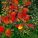 Autumn - Red Leaves by Trevor Kersley