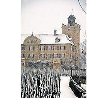 Mainefeld vineyards Photographic Print