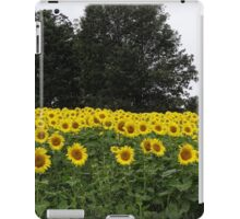 Field full of sunshine iPad Case/Skin