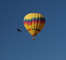 Two Forms of Flight by Loree McComb