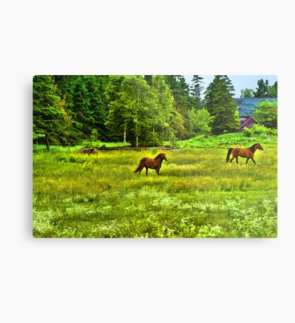 Classic Country Metal Print