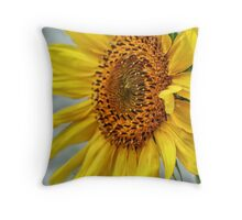 Sun Spun Throw Pillow