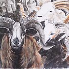 Ram Patterns by Cynthia Brewster