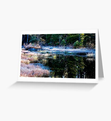 frosty swamp Greeting Card